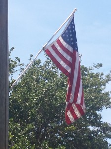 Cape Story Flag